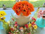 Colors of Poppies Wreath