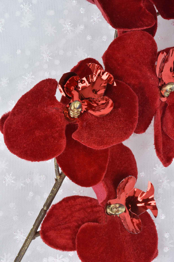 Red Orchid Sprays