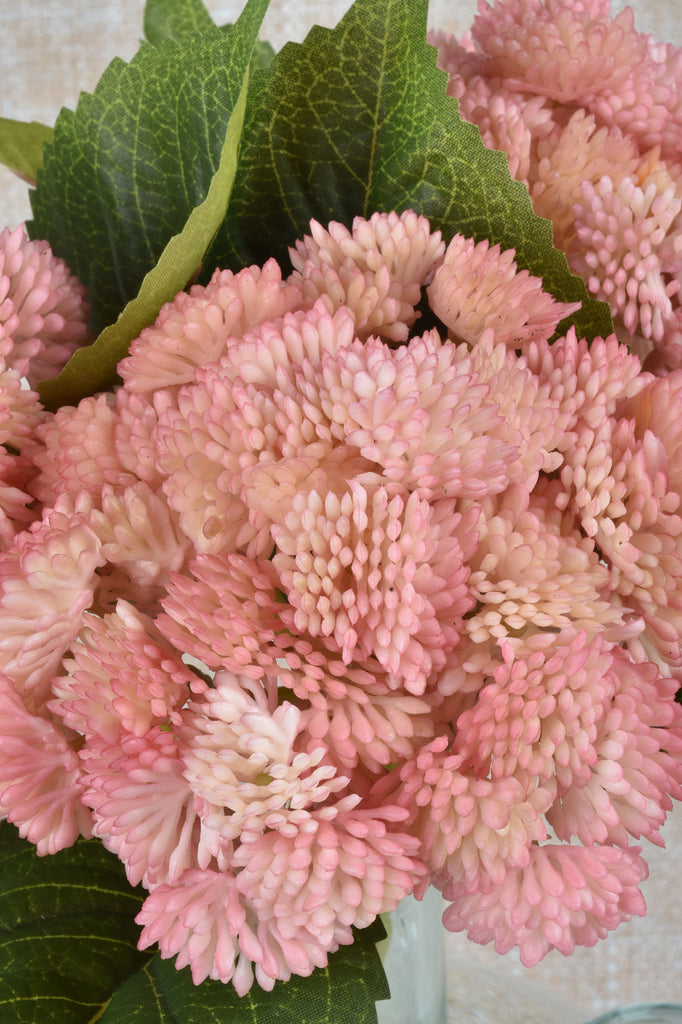 Pink or White Sedum Sprays
