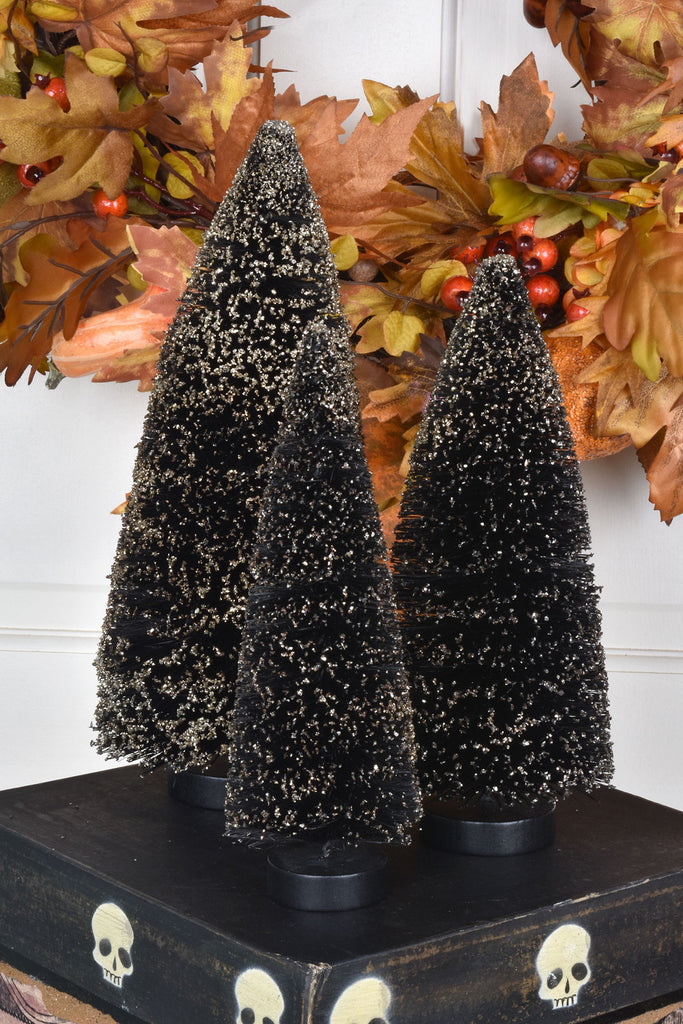 Gold Tipped Black Bottle Brush Trees