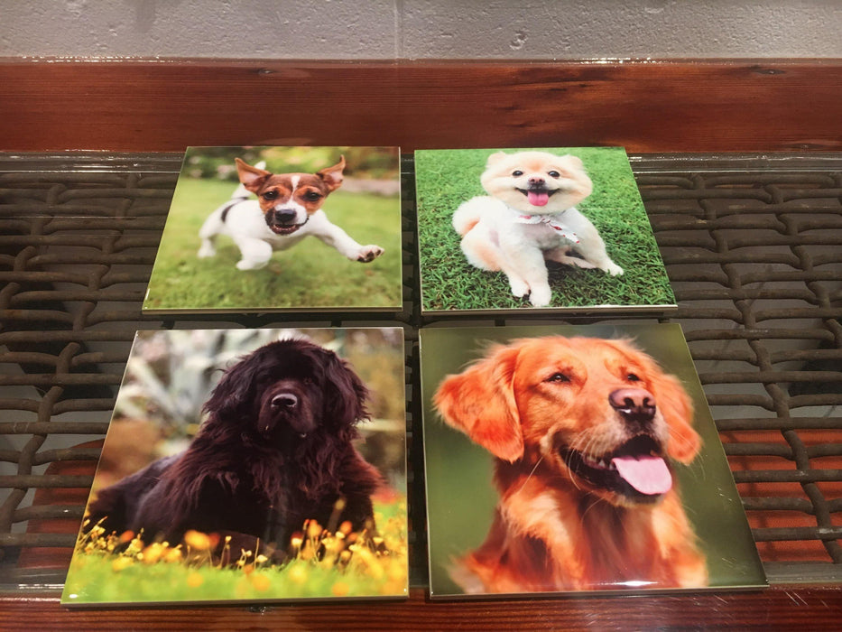 Canine Personalized Coasters