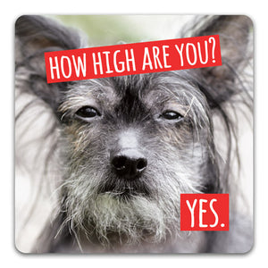 111 How High are You Funny Rubber Tabletop Car Coaster by CJ Bella Co.