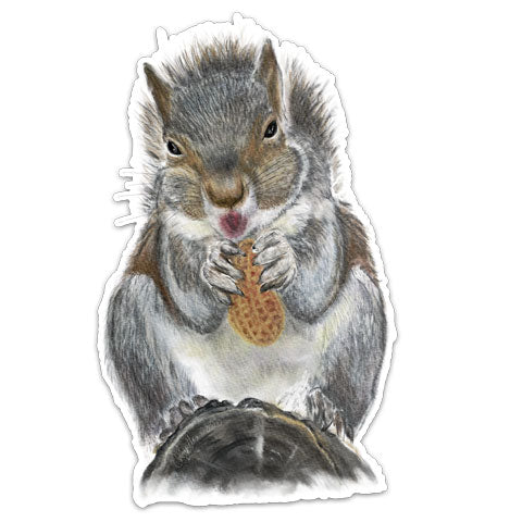 CJ6-071-Squirrel-Vinyl-Decal-by-CJ-Bella-Co