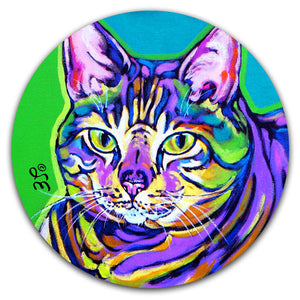 SE2-102-Cat-Tabby-Paint-Car-Coaster-by-Sally-Evans-and-CJ-Bella-Co