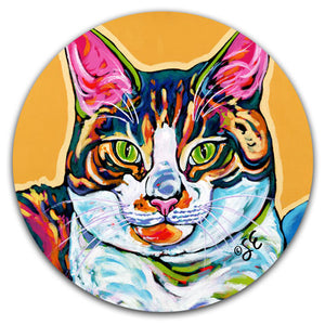 SE2-103-Cat-Tabby-Cute-Car-Coaster-by-Sally-Evans-and-CJ-Bella-Co