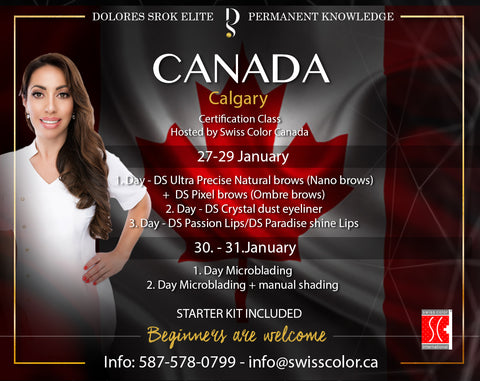 3 DAYS PMU CERTIFICATION CLASS WITH DOLORES SROK JANUARY 27-29, 2018 - SWISS COLOR™  Canada Permanent Makeup