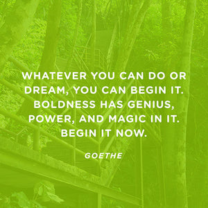 Goethe quote- Whatever you can do or dream, you can begin it...
