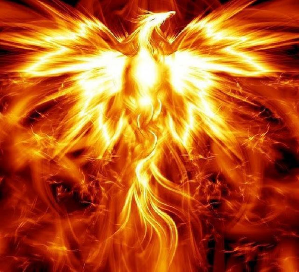 Are you the Phoenix or the Dove?
