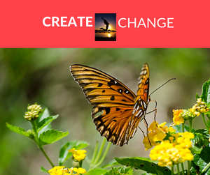 What Needs to Happen to CREATE CHANGE in 2019?