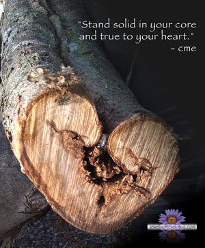 image of heart shaped wood with quote