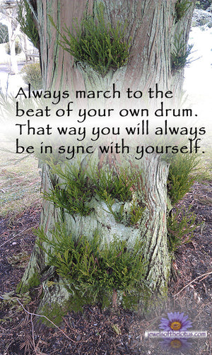 Always march to the beat of your own drum…
