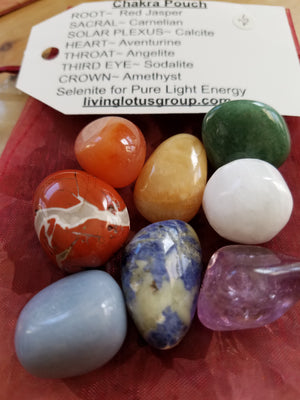 Chakra Crystals Reiki Pouch