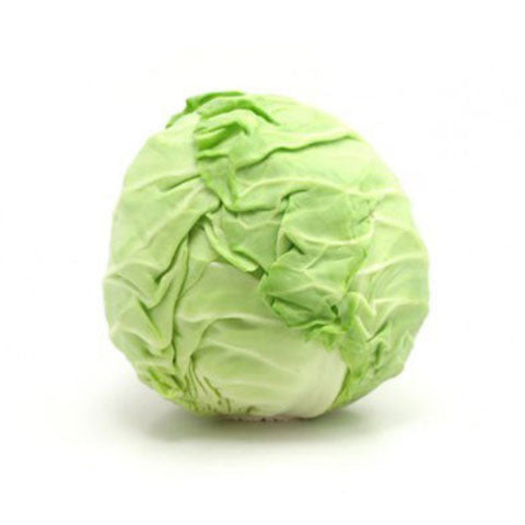 Green Cabbage - Bikeables