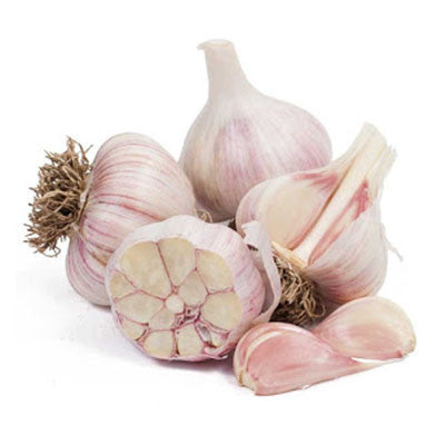 Organic Garlic - Bikeables