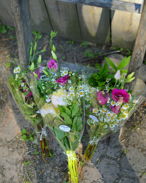 Locally Grown Fresh Cut Flowers
