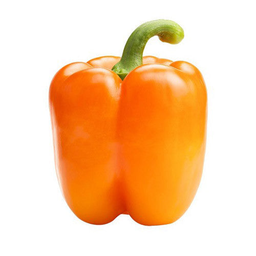 Orange Pepper - Bikeables