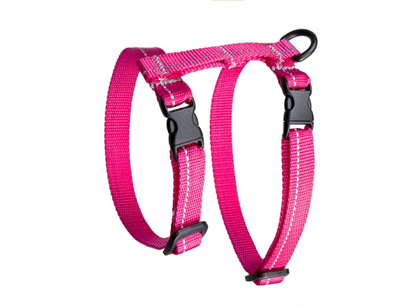 Kitty Primary Harness