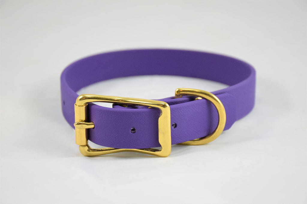 Elessar Biothane Collar - Bright Purple w/ Brass Hardware