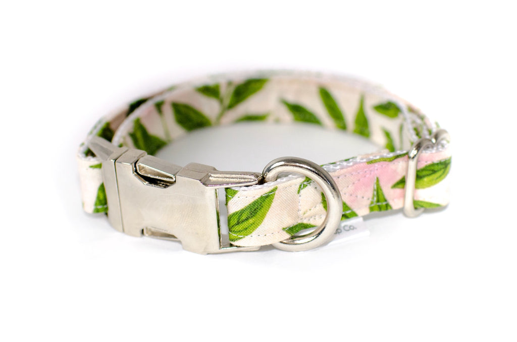 Pink Palm Dog Collar