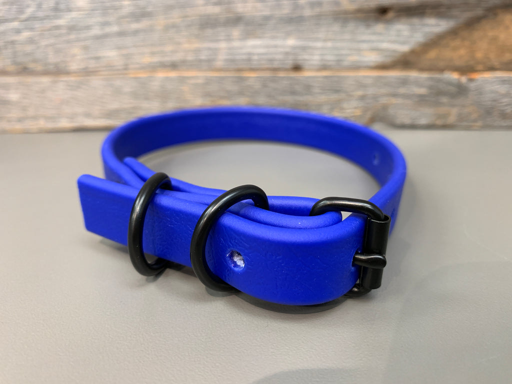 Halfling Biothane Collar - Royal Blue with Black Hardware