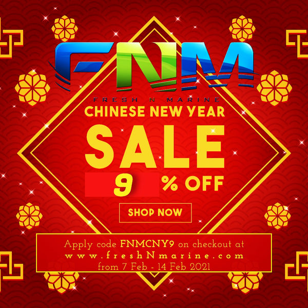 Chinese New Year Offer of 9% for Online Purchase!
