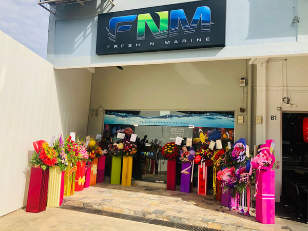 Grand Opening of FNM Flagship Store @ 79 Upper East Coast Road, Singapore 455219