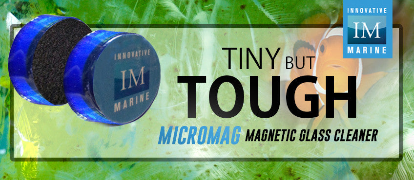 Innovative Marine MicroMag - Tiny but Tough