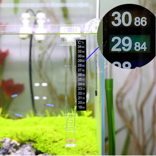 TIP from FNM: Routine Checking of Aquarium Equipments
