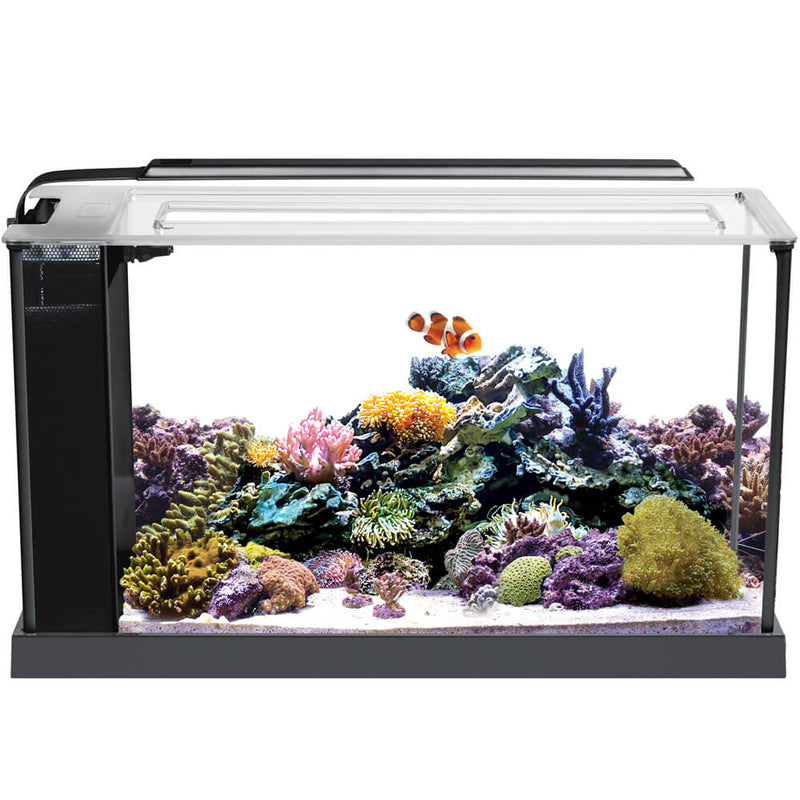 Fluval Evo Saltwater Aquarium Kit 19L (5 US Gallon)
