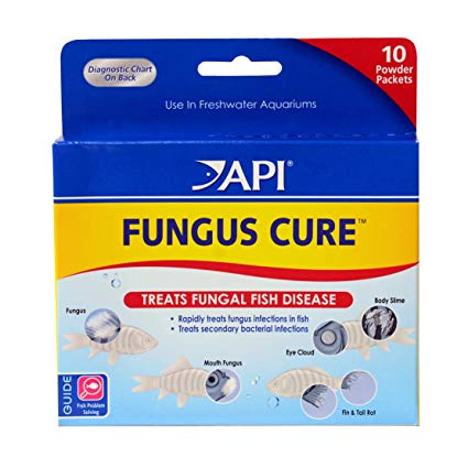 API Fungus Cure Powder 10 Packets