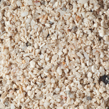 Caribsea Arag-Alive! Special Grade Reef Sand 20 lbs