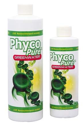 PhycoPure™ Greenwater 8oz