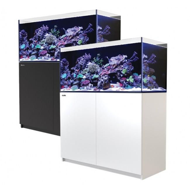 Fresh N Marine | No. 1 Choice Online Aquarium Shop
