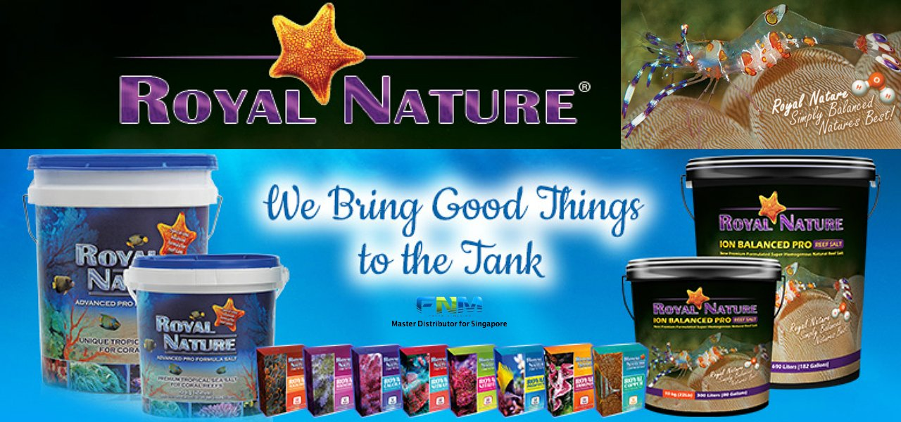 Fresh N Marine | No  1 Choice Online Aquarium Shop