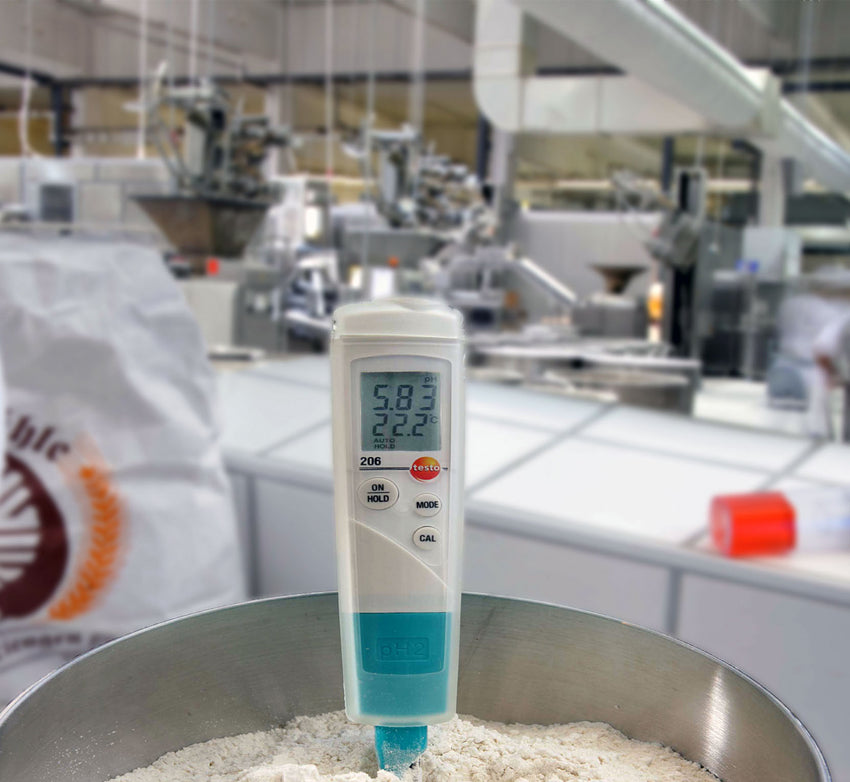 pH Meter for Semi Solid Foods, Testo 206 pH2
