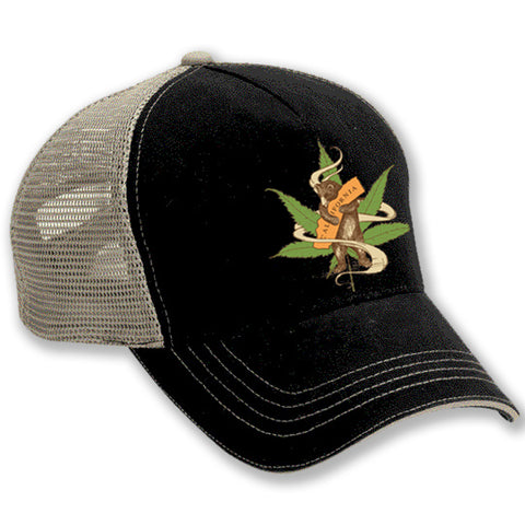 Hat - Cannabis Bear