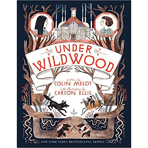 Book - Under Wildwood by Colin Meloy