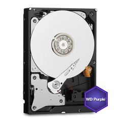 WD Disco Duro Interno Purple de 10 TB (WD100PURZ)