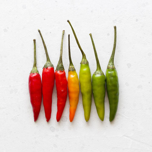 Why We Crave Spice & the Health Benefits of Chili Peppers