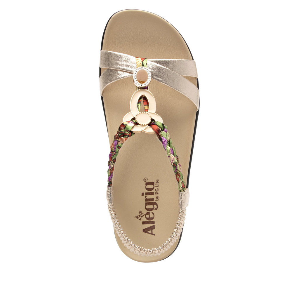 Roz Gold Multi t-strap sandal with vegan uppers and decorative hardware - ROZ-789_S4 (2077450862646)