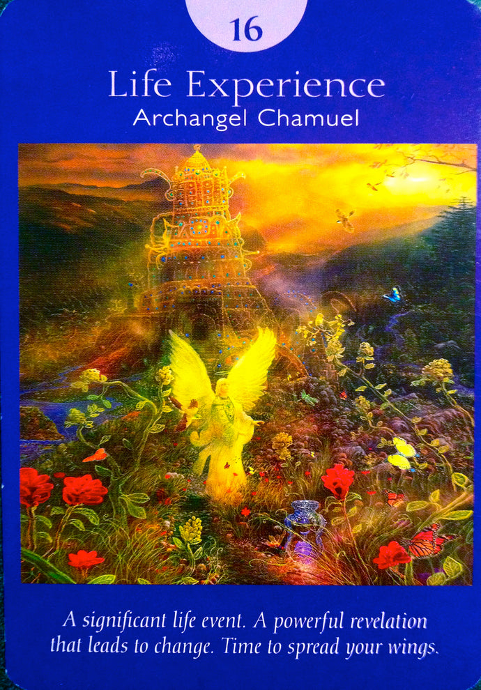 Life Path Chakra Reading