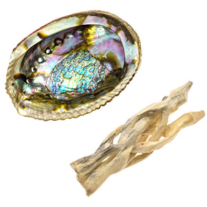 Premium Abalone Shell with Natural Wooden Cobra Stand