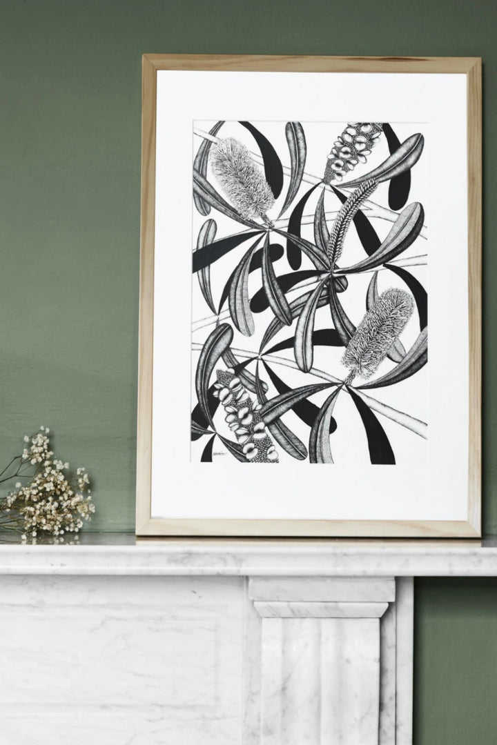 Illustration - Banksia Limited Edition