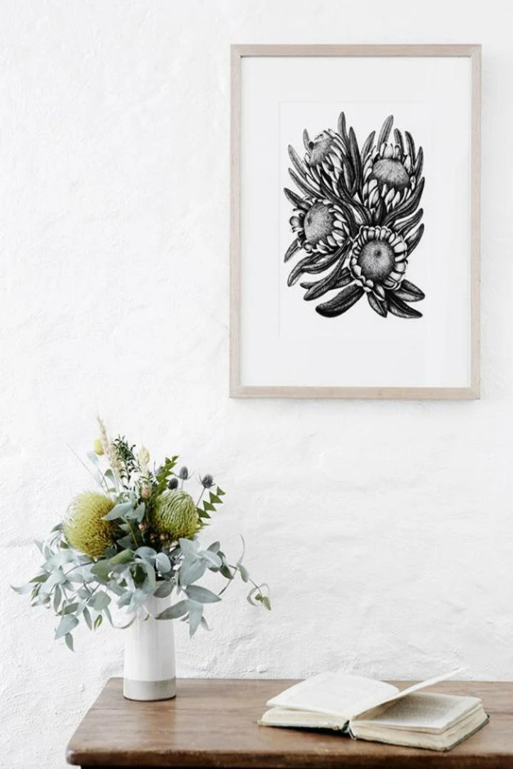 Illustration - Protea Bunch Limited Edition - Shop Online At Mookah - mookah.com.au
