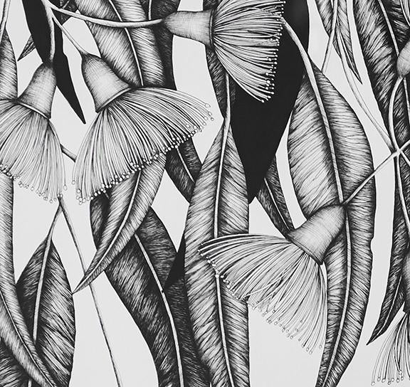 Illustration - Flowering Gum Limited Edition - Shop Online At Mookah - mookah.com.au