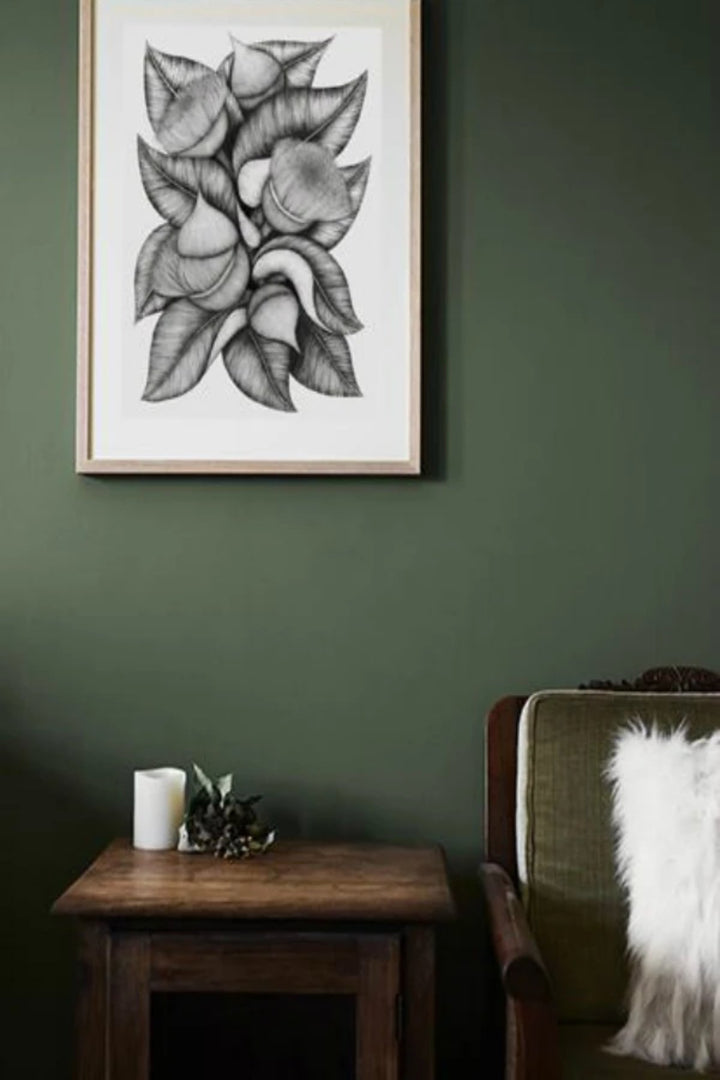 Illustration - Eucalyptus Macrocarpa - Shop Online At Mookah - mookah.com.au