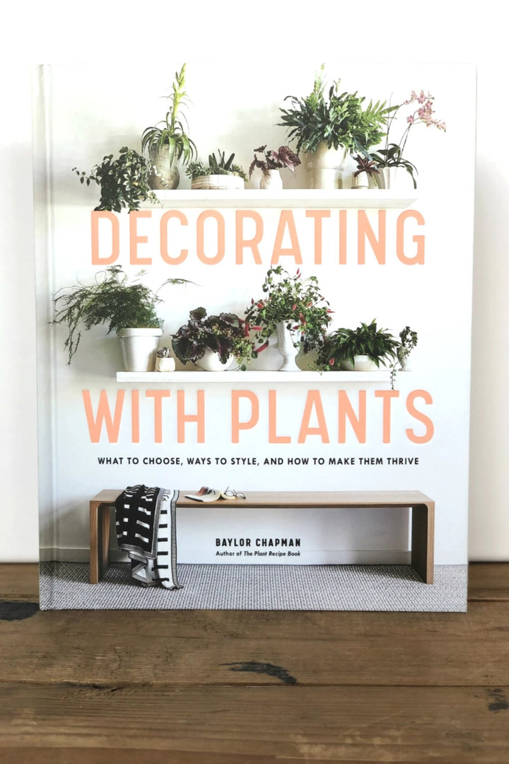 Decorating with Plants - Shop Online At Mookah - mookah.com.au