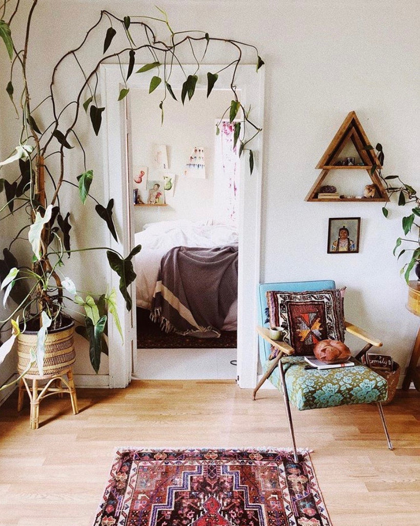 How to style your home with plants | Singapore urban jungle
