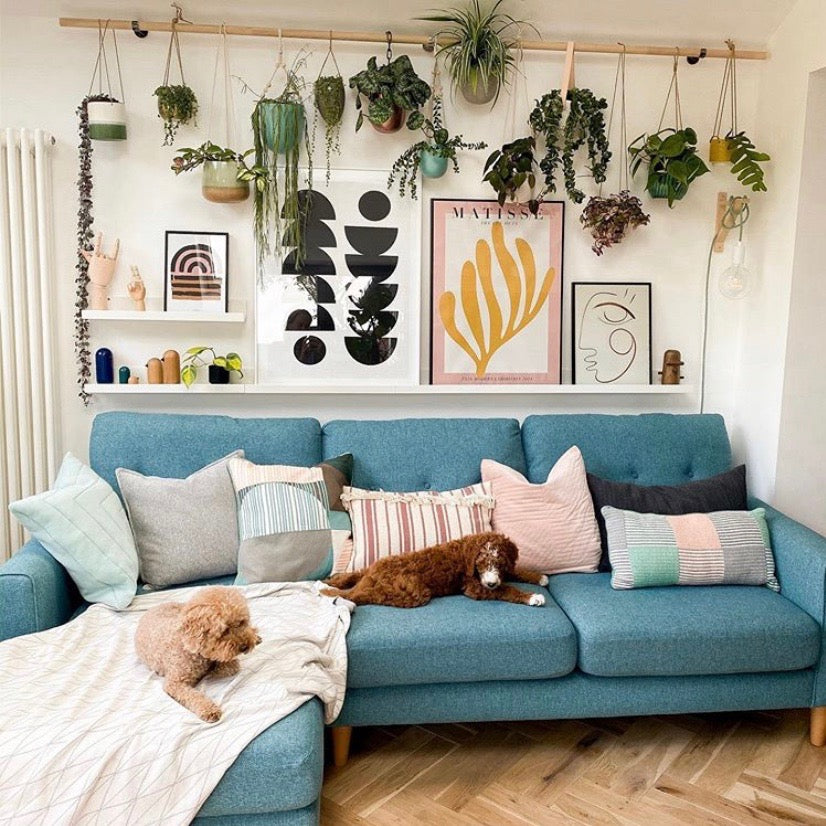 Home and decor Singapore | Styling your home with plants
