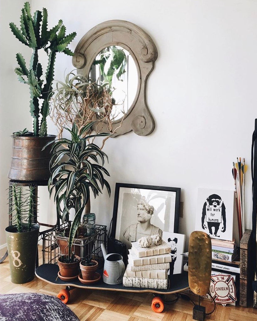 Plants make people happy | Styling your home with plants